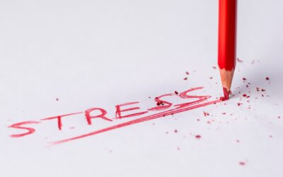 The Three D's for Less Stress, More Productivity and Results